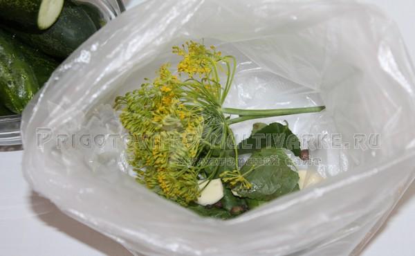 в пакет положить зелень для засолки