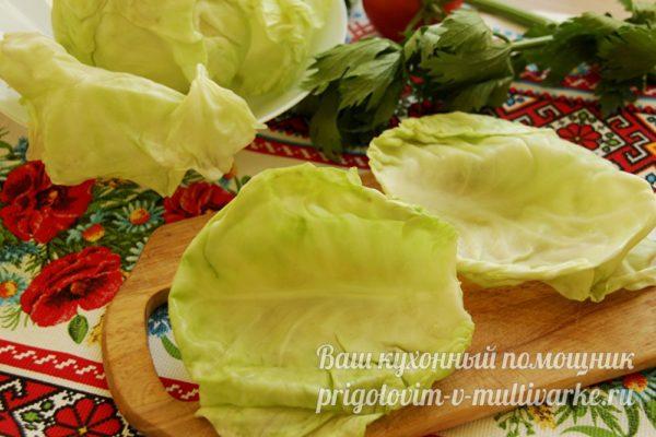 мягкие капустные листья