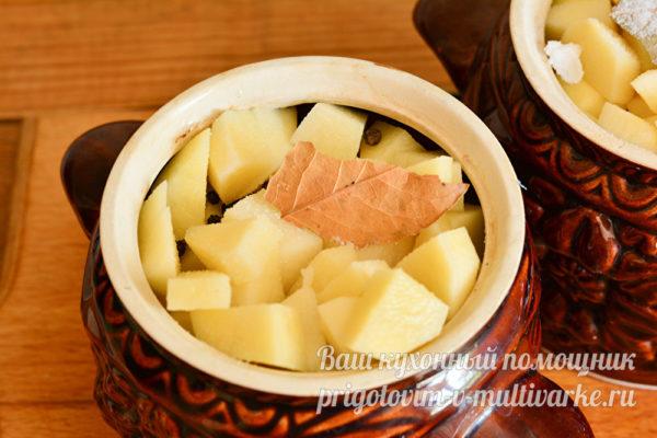 Закрыть картофелем