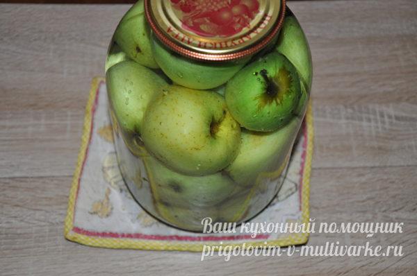 банка с яблоками